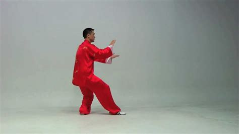 The Kung Fu Tai Chi Day Simplified 24 Routine