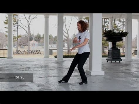 The 108 Tai Chi Moves DVD (as taught by Master Moy Lin